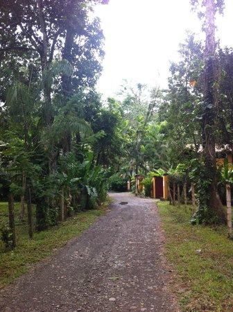 Caribe Town : Main entrance