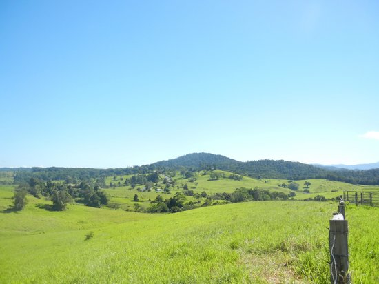 Northern Explorer Tours : どこまでも広がる草原の風景は日本の北海道の富良野に似ていると評判です