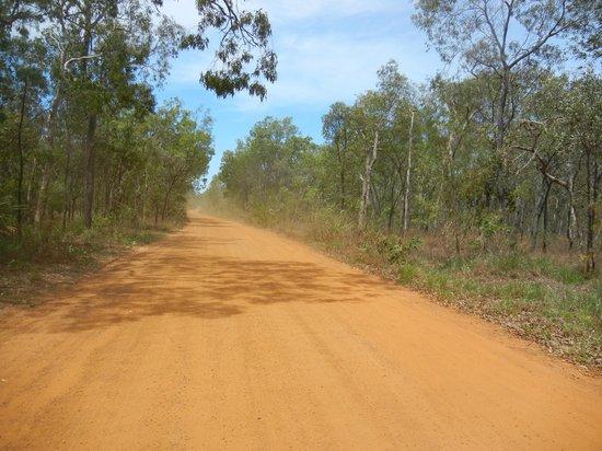 Northern Explorer Tours : オーストラリア内陸部でしか見ることの出来ない赤茶けた土の舗装されていない一本道が続く…「これぞオーストラリア‼」って感じ