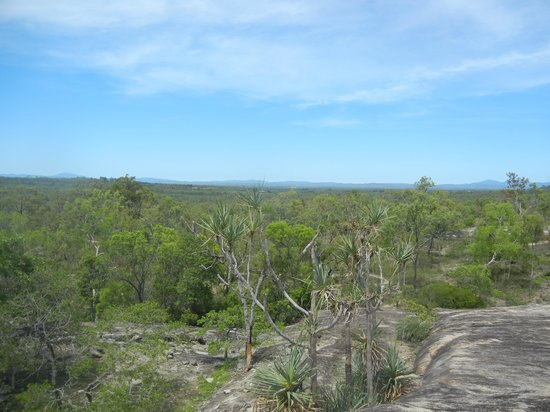 Northern Explorer Tours : 岩場から広がるアウトバックの広大な眺め