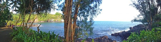 Hawaii Tropical Botanical Garden : view of the bay from the lower gardens