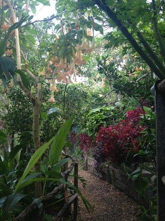 Run This Way -  Day Tours: Secret Garden
