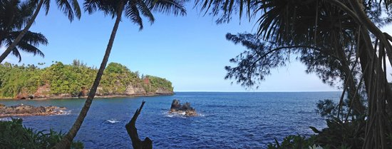 Hawaii Tropical Botanical Garden : gorgeous view of the bay