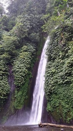 Alam Puisi Villa: waterfall at munduk as part of a day tour from Alam puisi