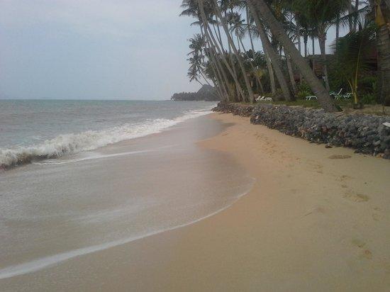 Chan Hom: bang por beach