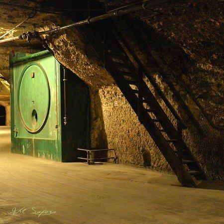 Grandes Caves Saint Roch - Blanc Foussy: Crédit photo Jean-Michel SUPERA