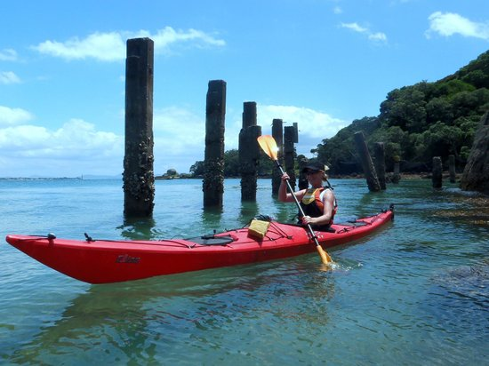 Pacific Coast Kayaks: Reotahi - Old freezing works alongside marine Reserve