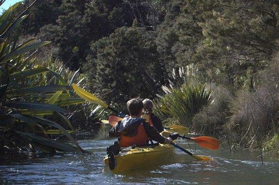 Pacific Coast Kayaks: Waitoi Creek - Ngunguru River