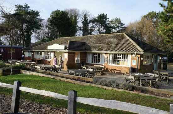 Hindhead Commons and the Devil's Punch Bowl: Cafe and shop at Hindhead
