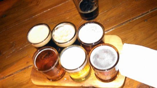 Taos Mesa Brewing: beer sampler