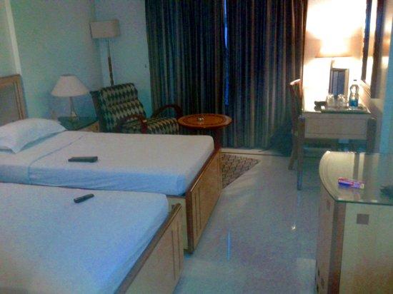 Hotel Ritz Inn : Deluxe Room