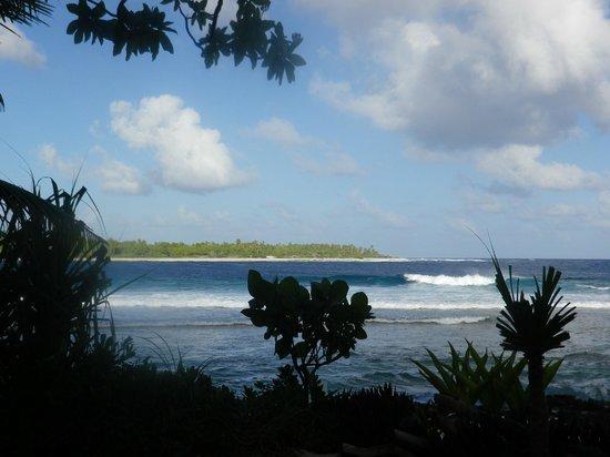 Merou Bleu : spot surf