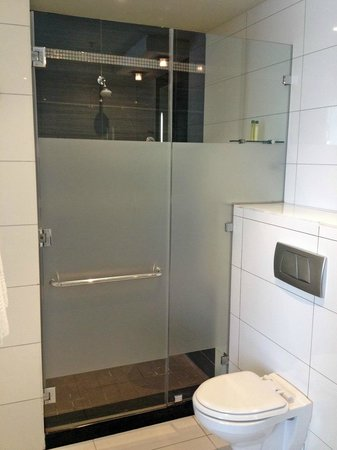 DoubleTree by Hilton Cape Town - Upper Eastside: Room 252 - toilet & shower stall