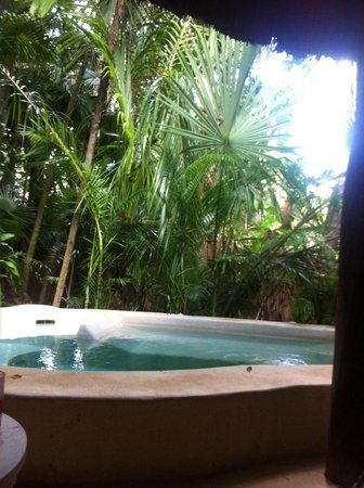 Viceroy Riviera Maya : Around our plunge pool