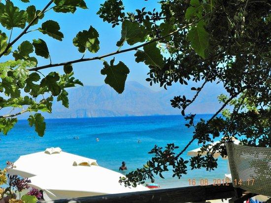 SuneoClub Chrissi Amoudia: Vista dalla terrazza