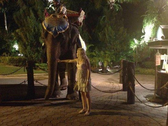 Phuket FantaSea: Слон