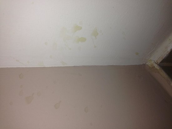 The Royal Riviera Hotel: filthy walls and floor - unknown substance 'the suite'