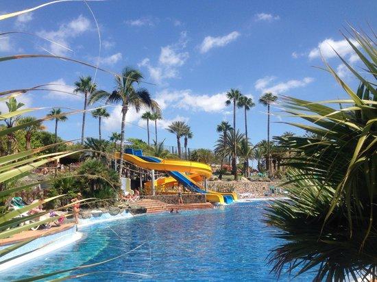 IFA Interclub Atlantic Hotel: Aunque parezca de niños... Los mayores se lo pasan genial :)