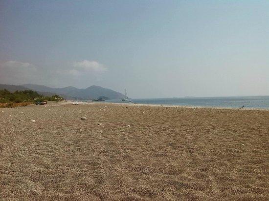 Bayrams Tree Houses: Strand op 10 minuten lopen