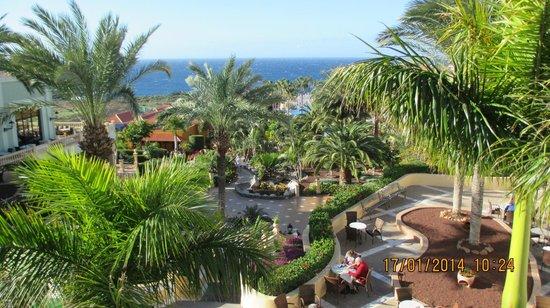 Bahia Principe Costa Adeje : View of the beautiful landscape gardens