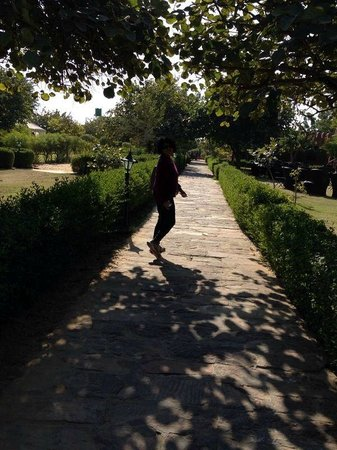 Mirvana Nature Resort and Camp: a walk to remember