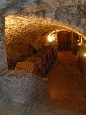 Castello di Meleto : wine cellar