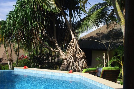 Mangoes Resort : One of the pools