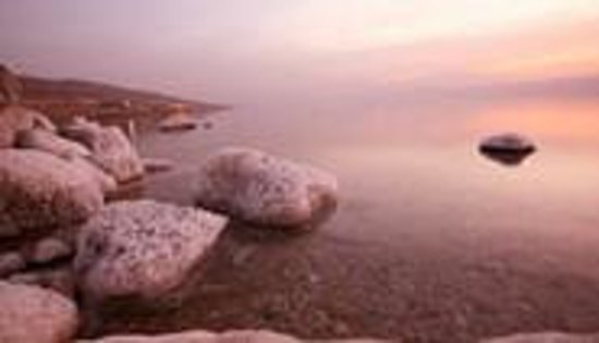 Egged Tours - Day Tours : Dead Sea Tour