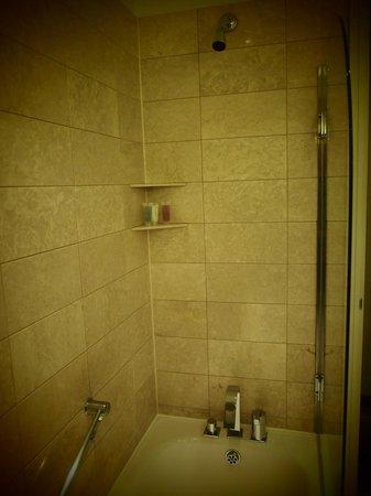 Hyatt Regency Birmingham: Shower, big enough and spotless