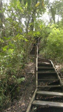 Abade Waterfall: Escadas