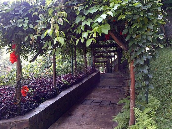 Padma Hotel Bandung: outbound view