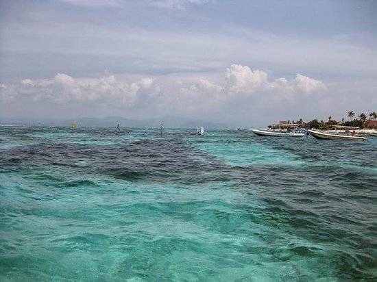 World Diving Lembongan : Crystal water in front of the room