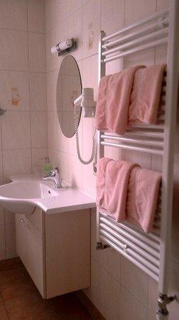 Hotel Dachsbaude & Kammbaude: DU WC Haus Kammbaude