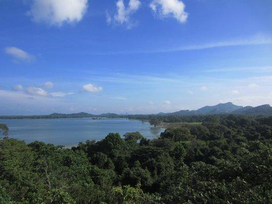 Heritance Kandalama: view from 5th floor