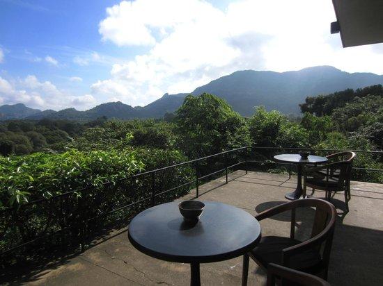 Heritance Kandalama: view from cafe