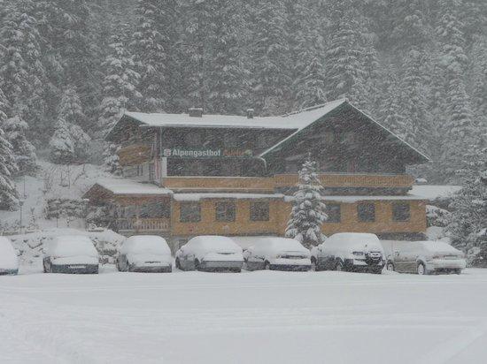 Alpengasthof Paletti: paletti im schnee