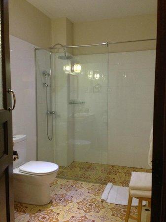 Campbell House: Silver Leaf's bathroom - shower only