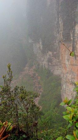 Parque Nacional do Monte Roraima: No caminho para o topo do Roraima.