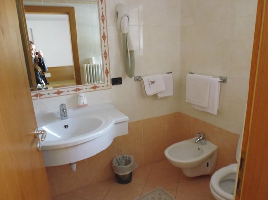 Hotel Restaurant Wellness Waldheim: Bagno della camera doppia