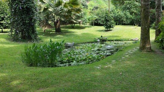 Hacienda Venecia Coffee Farm: In the garden