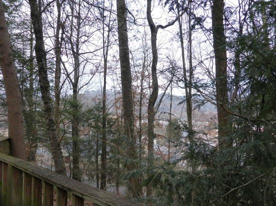Fryemont Inn : View from log cabin towards Bryson City