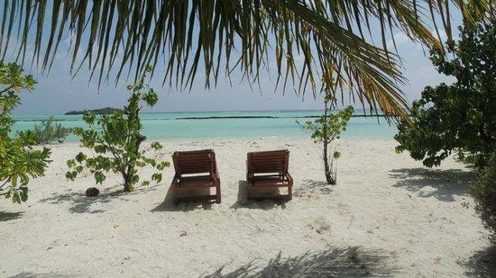 Rihiveli by Castaway Hotels & Escapes : Nos transats devant notre chambre !! Soleil levant...
