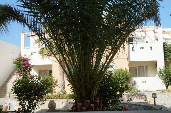 Galeana Mare Hotel Apartments : Территория