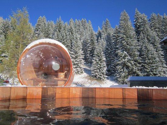 Les Trois Ours : Spa et sauna cosmic