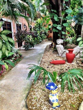 Hotel Casa de las Flores Playa del Carmen: Giardino