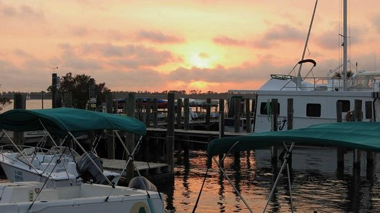 Flippers: Sunset Over Bear Point Marina