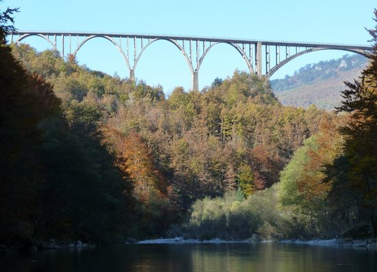 Tara Bridge : from the raft