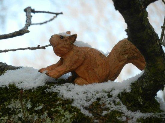 Petit cureuil sous la neige picture of les cabanes du moulin orly sur mor - Les cabanes du trappeur ...