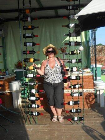 Restaurante El Bolo Vista Gourmet: In mezzo al vino...
