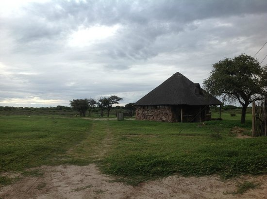 Kalahari Bush Breaks: Dirty ablution and overgrown campsites
